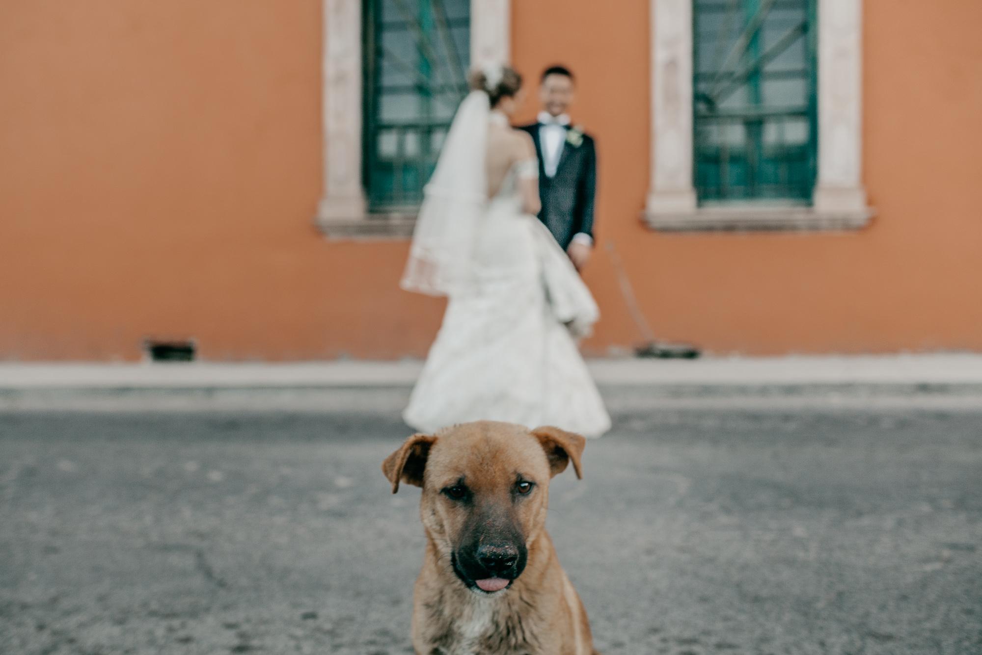 Mario-Karla-Wedding-128
